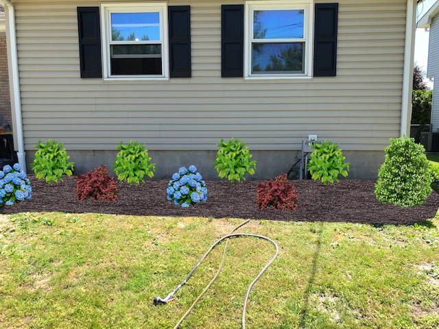 Foundation plantings (CAD)