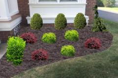 Foundation shrubs (CAD)