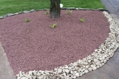 Tree-stones-mulch
