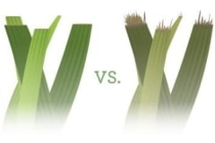 Lawn-sharp-vs-dull-blades