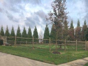 Bohonyi Landscaping